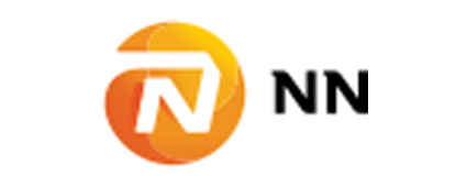 NN insurance services belgium NV